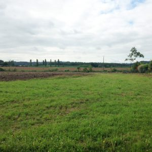 terrain-Saint-Seurin-de-Prats